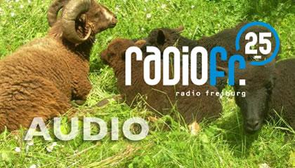 media_audio